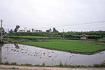 Picture of 关麓 Guanlu village