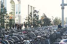 Picture of 北京市 -- 自行车 Beijing City -- bicycles