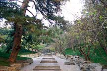Picture of ԰��һ· Garden Path