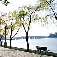 Picture of ��������ʮ�߿��ž� Kunming Lake and 17-arch bridge
