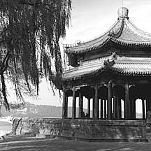 Picture of ͤ�� Large Pavillion
