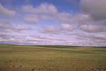 Picture of ������ϣ������ From Huhehaote City to Xilamuren Grassland