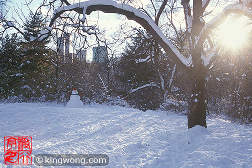 纽约市中央公园 New York City Central Park
