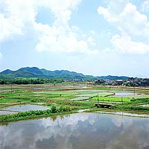 Picture of 广东 都斛镇 Duhu, Guangdong Province