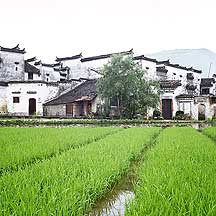 关麓 Guanlu village picture